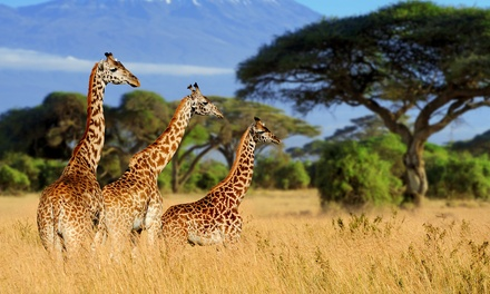 stukenbrock safaripark preise