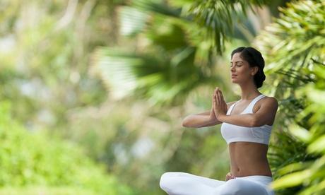 Virtual Ayurveda, Meditation Instruction, Reiki, or Mindful Yoga from Mountain Wisdom Yoga (Up to 20% Off)