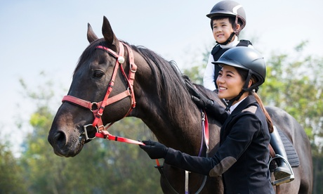 Up to 26% Off on Horse Back Riding - Training at Providence Heart Ranch
