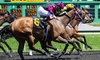 50% Off Horse Racing at Emerald Downs