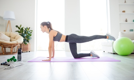 One or Three 30-Minute Online Personal Training Sessions from Fit For Life Jenkintown (Up to 50% Off)