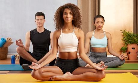 1er, 3er- oder 5er-Karte für Yoga bei Mohnblume YogaPole in Train