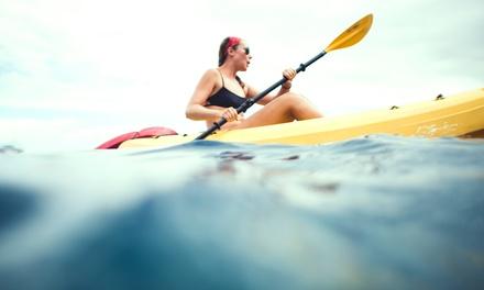 Alquiler de dos horas de kayak para 1 o 2 personas en VelAir (hasta un 46% de descuento)