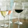 Cours d'initiation à l'œnologie avec une dégustation de 6 vins