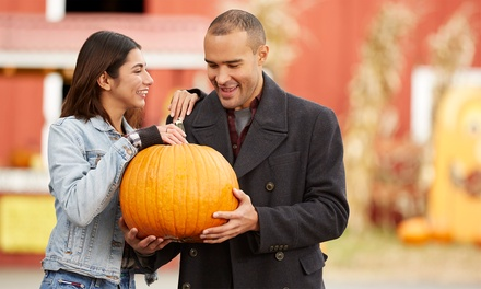 Season Passes for Two or Four to Crawford Pumpkin Farm (Up to 45% Off)