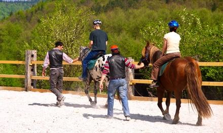Fino a 7 lezioni di equitazione a 19,90€euro