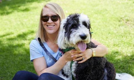 Curso online de terapia asistida con animales de 150 horas por 14,95 € en Cursos Click