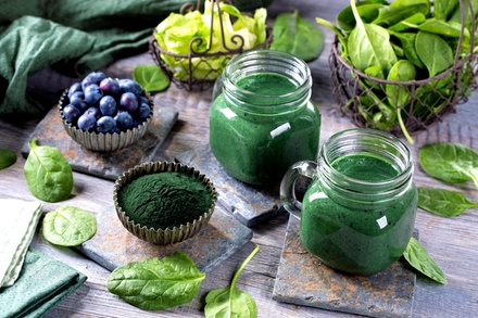 Master Herbalist Online Course from Centre of Excellence Online (97% Off)