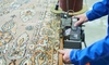 Up to 45% Off Carpet Cleaning from OxyBrite Cleaning Services