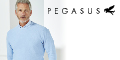 Pegasus Menswear coupons