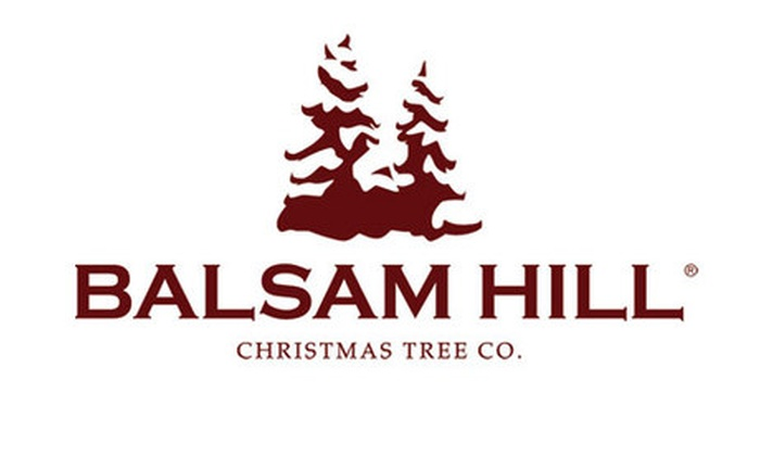Balsam Hill Promo Code: 10% Off Christmas Tree Skirt With Balsam Hill Coupon Code - Online Only