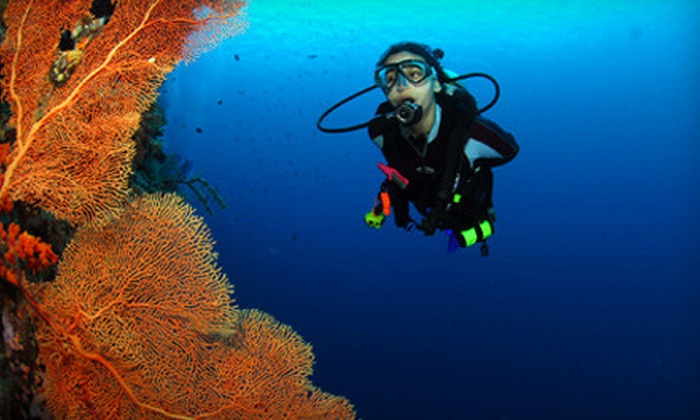 Adventure Diving - Crystal River: $169 for a Two-Day Scuba-Certification Package at Adventure Diving in Crystal River (Up to $399 Value)
