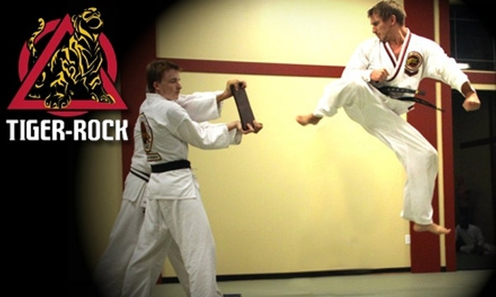 Tiger Rock Academy - Cordova Office Plaza: $22 for Four Weeks of Taekwondo and Yoga Classes at Tiger Rock Academy