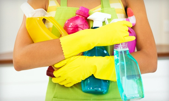 Express Cleaning of Tampa Bay - Sun Bay South: Two, Three, or Four Hours of House-Cleaning Services from Express Cleaning of Tampa Bay