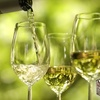 58% Off Winery Tour & Tasting in Langley