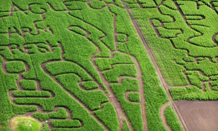 Bowden Sun Maze - Bowden: $8 for Farm Outing and Pumpkin Picking at Bowden Sun Maze (Up to $17.50 Value)