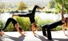 Element Yoga and Health Studio- Out of bus - Fourth Ward: Six Yoga Classes or Two Months of Unlimited Yoga Classes at Element Yoga and Health Studio (Up to 69% Off)