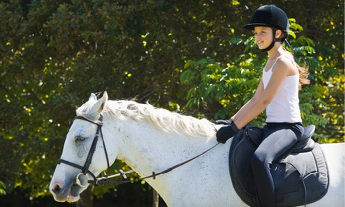 Bay Area Equestrian Center - Alvin-Pearland: Two or Four Private Horseback-Riding Lessons at Bay Area Equestrian Center in Pearland (Up to 63% Off)
