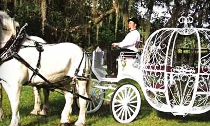 Ocala Carriage & Tours - Fellowship: $45 for a One-Hour Carriage Tour for Two from Ocala Carriage & Tours ($95 Value)