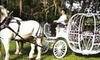 Ocala Carriage & Tours - Fellowship: $45 for a One-Hour Carriage Tour for Two from Ocala Carriage & Tours ($95 Value)