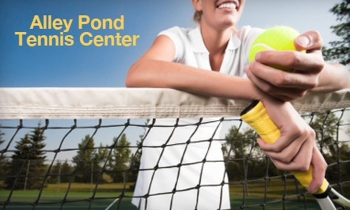 Alley Pond Tennis Center - Bellerose Floral Park: Three Hours of Court Time or a Two-Hour Mini-Camp at Alley Pond Tennis Center. Choose Between Two Options.