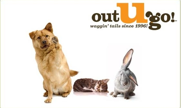 Out U Go - Chicago: $35 for Five Dog Walks from Out-U-Go! (Normally $75)