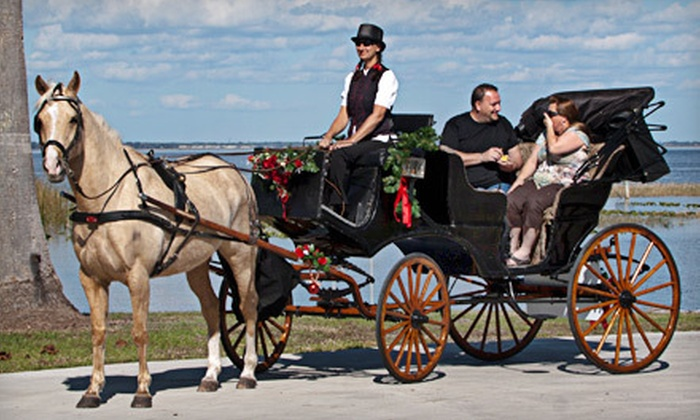 All Hitched Up - St Cloud: Private Carriage Rides from All Hitched Up in St. Cloud (Up to 60% Off). Two Options Available.