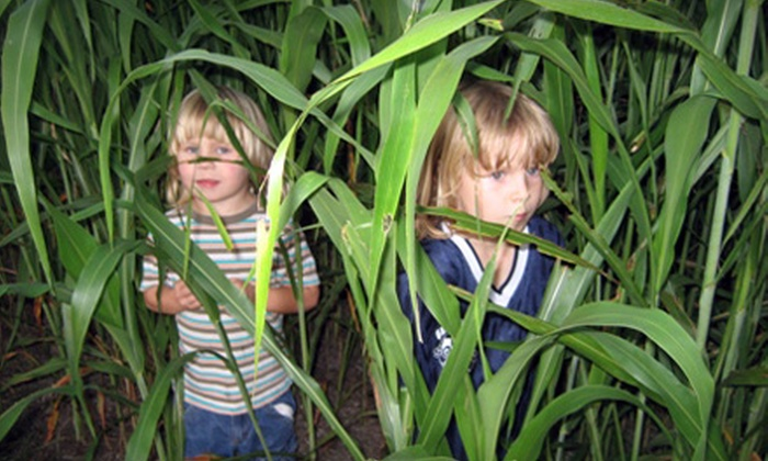 Timberline Farm - Belleview: Corn Maze Festival Outing for One, Two, or Four at Timberline Farm