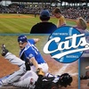 57% Off Fort Worth Cats Ticket