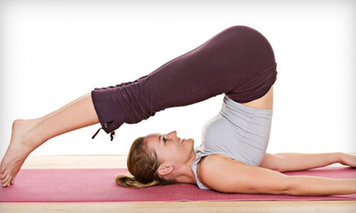 Mindful Yoga - Stocker: Yoga Workshop and Three Classes or Five Yoga Classes at Mindful Yoga in Kenosha (53% Off)