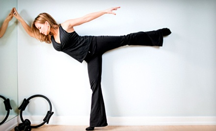5-Class Pass for Bar or Mat Classes (an $85 value) - Pure Element Pilates in West Bloomfield