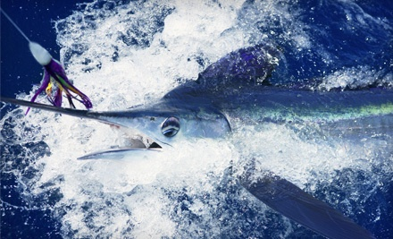 Fish on Board - Fish on Board in Fort Lauderdale