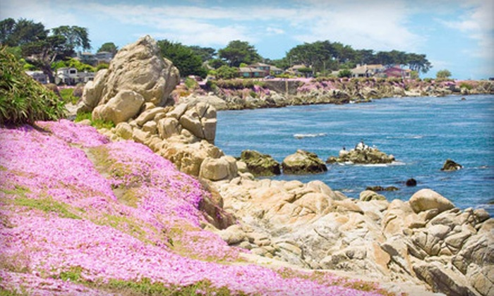 The Inn at 213 Seventeen Mile Drive - Pacific Grove: $149 for a One-Night Stay in a Deluxe Room at the Inn at 213 Seventeen Mile Drive in California
