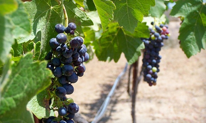 Pamo Valley Winery, Schwaesdall Winery, and Lenora Winery - Ramona: $49 for a Wine Tasting for Four at Pamo Valley Winery, Schwaesdall Winery, and Lenora Winery in Ramona ($108 Value)