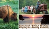 Sequoyah Riding Stables - Hulbert: $75 Hayride and Buffalo Feeding for Up to 30 People at Sequoyah Riding Stables (Up to $180 Value)