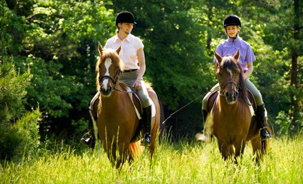 40-Minute Guided Horseback Trail Ride for 2 (a $74 value) - Wildwood Stables in Crossville