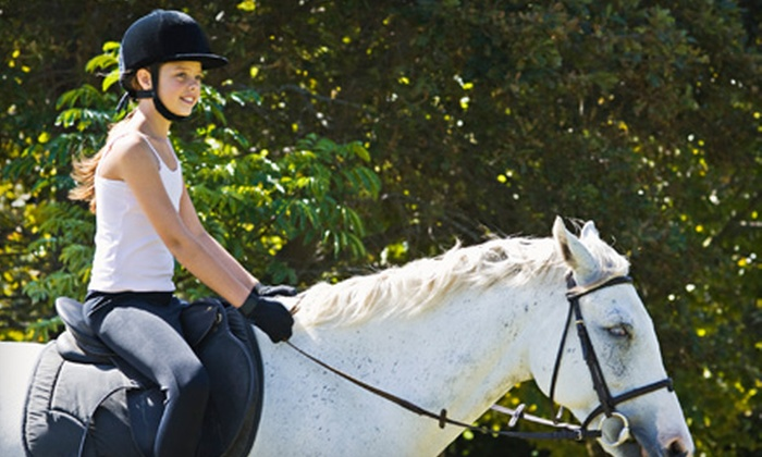 Chiron Equestrian Services - Saco: $25 for English Horseback-Riding Experience at Chiron Equestrian Services in Saco ($50 Value)