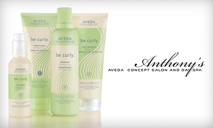 Anthony's Aveda Concept Salon & Day Spa   - Bay Area: $10 for $20 Worth of Aveda Products at Anthony's Aveda Concept Salon & Day Spa
