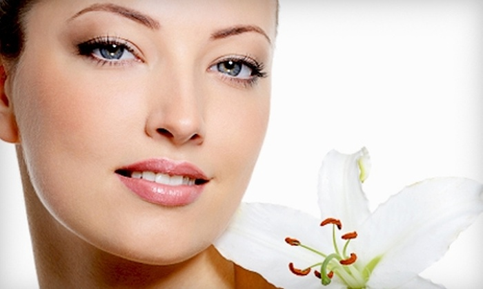 Peel Palace - IAH Airport Area: Facial Treatments at Peel Palace. Two Options Available.