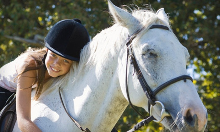 Fieldgate Stables - Hornby: One or Three One-Hour Private Horse-Riding Lessons at Fieldgate Stables in Hornby (Up to 61% Off)