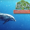 Half Off Private Eco-Tour from Live Oac