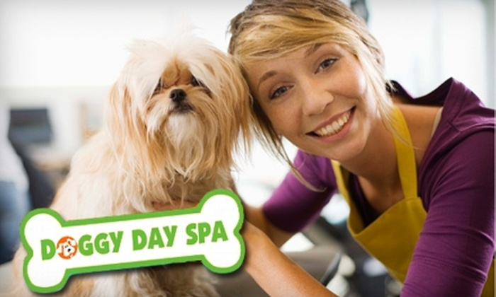 Doggy Day Spa and More - Borden Farm - Stewart Farm - Parkwood Hills - Fisher Glen: $29 for a Pet Spa Treatment at Doggy Day Spa and More (Up to $65 Value)