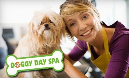 Doggy Day Spa and More - Doggy Day Spa and More in Ottawa