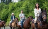 Trail Horse Adventures - Cottonwood: 60- or 90-Minute Horseback Trail Rides for One or Two at Arizona Trail Horse Adventures in Cottonwood (Up to 55% Off)