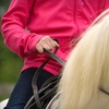 Up to 54% Off Horseback-Riding Lesson or Pony Ride