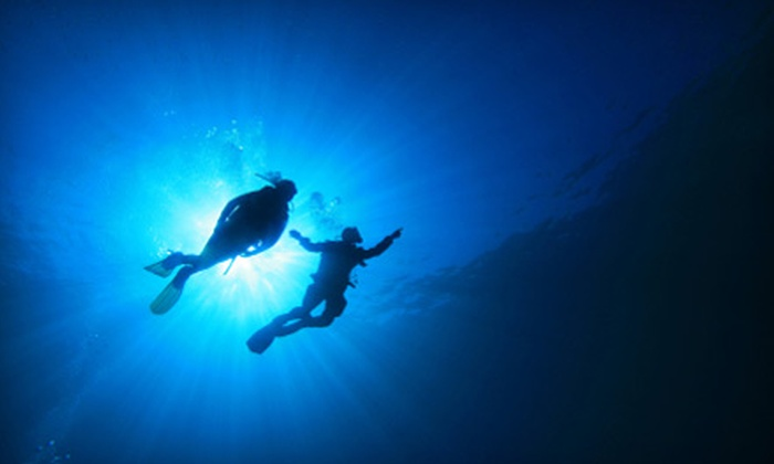 PCH Scuba - Downtown Los Angeles: $399 for a PADI Scuba-Certification Course with Catalina Island Getaway from PCH Scuba (Up to $843.10 Value)
