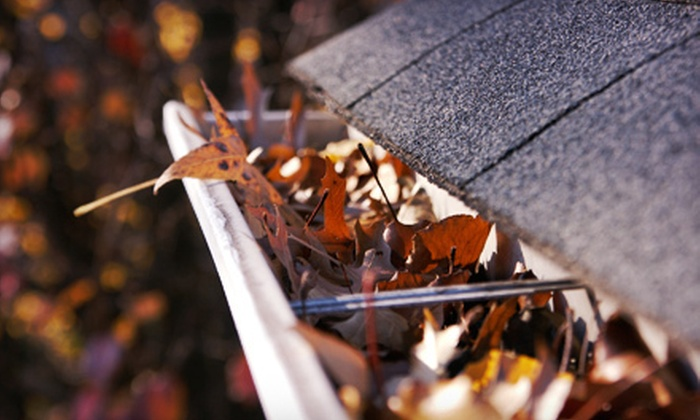 Turning Leaf Landscape Maintenance - Laurel Hill: Exterior Home-Maintenance Services from Turning Leaf Landscape Maintenance (Up to 66% Off). Four Options Available.