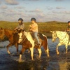 Half Off Horseback Ride on the Beach