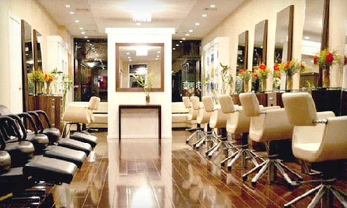 Lush New York Salon - Bay Ridge & Fort Hamilton: Hair Treatments at Lush New York Salon in Brooklyn. Choose Between Two Options.