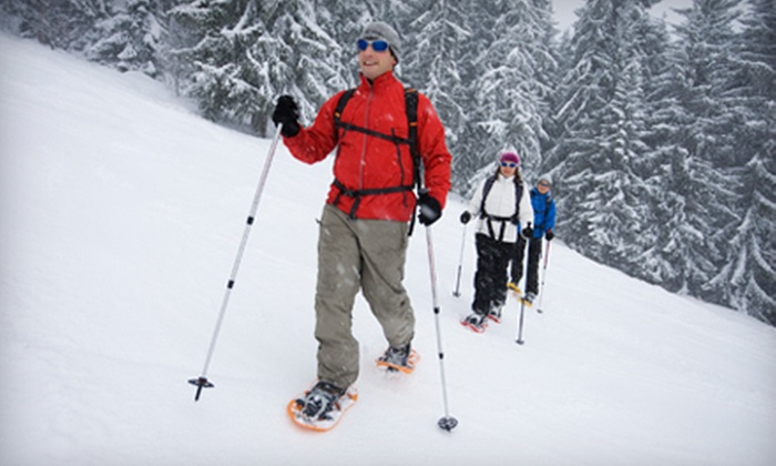 RideOn Rentals - Collingwood: Guided or Self-Guided Snowshoeing Adventure from RideOn Rentals in Ravenna (Up to 52% Off)